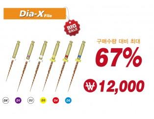 Dia-X File(구매수량별 할인적용)